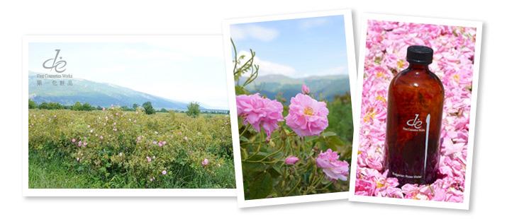 保加利亞玫瑰谷